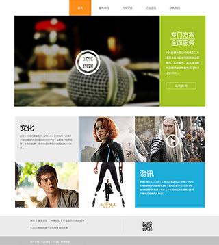 文化传媒网站建设 制作文化传媒网站 广告、文化、设计服务网页制作