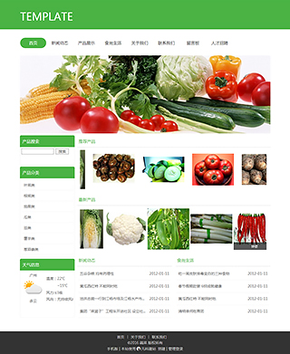 蔬果网站建设 制作蔬果网站 食品、茶饮、养生保健网页制作