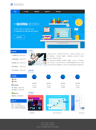 IT网站建设 制作IT网站 IT、软件、互联网网页制作