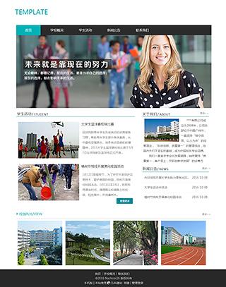 学校网站建设 制作学校网站 教育、政府、机构组织网站设计