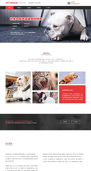 宠物网站建设 制作宠物网站 婚庆、摄影、生活服务网页制作
