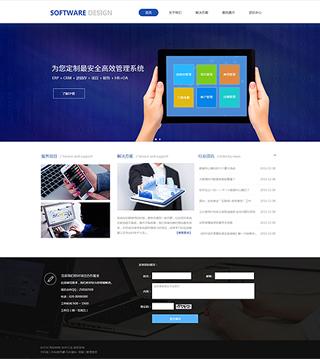 软件网站建设 制作软件网站 IT、软件、互联网网页制作