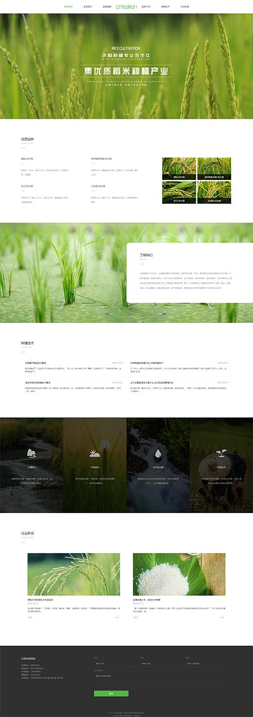 简洁稻米种植自适应网站模板