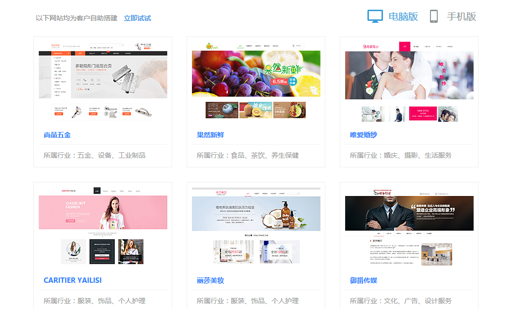 a网站案例模板