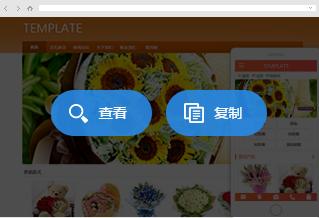 选择好网站模板并进行复制