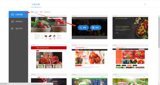 网站模板预览