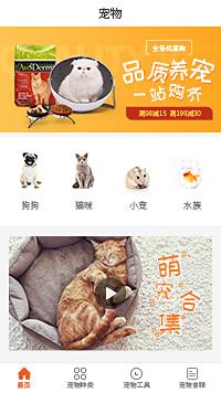 宠物领养-宠物领养中心