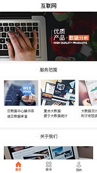 上海软件公司-上海软件开发公司小程序模板