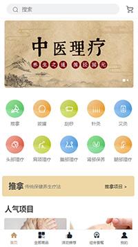 中医药网站模板-中医药微商城模板