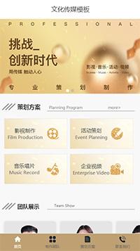 音乐唱片_文化传媒公司官方手机网站模板