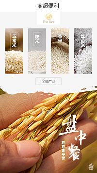 大米-五常大米-进口大米企业小程序模板