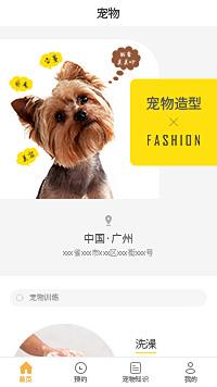 宠物店加盟-广州宠物店小程序模板
