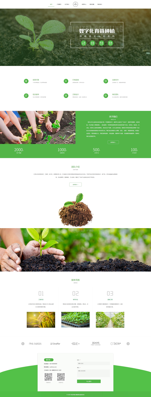 优质育苗种植