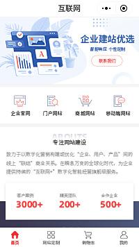 网站定制公司_高端网站定制开发公司小程序商城模板