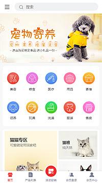 宠物美容_宠物领养服务店网上商城手机网店模板