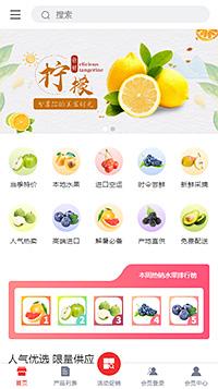 菠萝_凤梨_西瓜_草莓网购微商网店网站模板