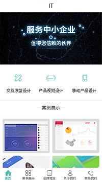 广州软件公司-广州软件公司小程序模板