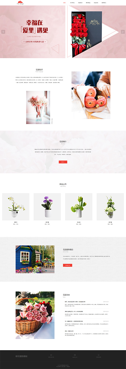 漂亮鲜花植物